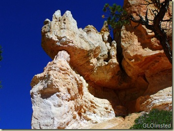 Rhino head hoodoo along Navajo Loop trail Bryce Canyon National Park Utah