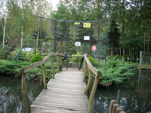Mostek prowadzący na Wyspę Kapucynek