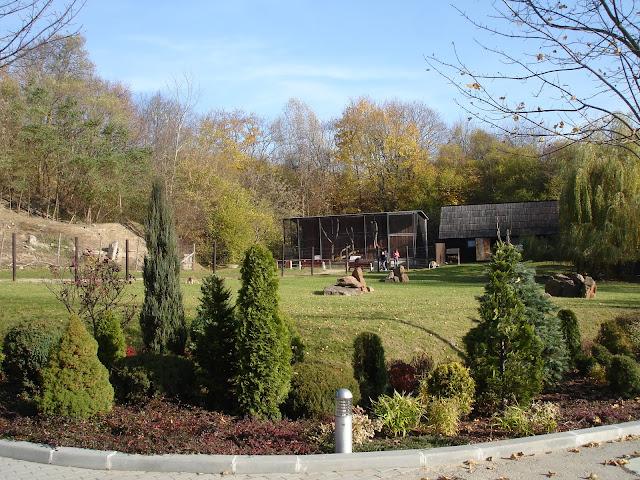 Płockie zoo