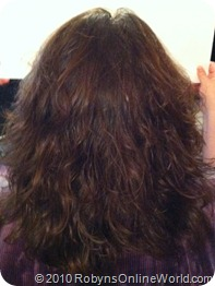 Back of Robyn's Hair