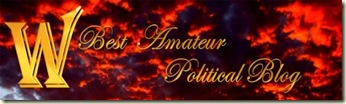 amateur-pol-blog-lite