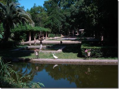 Glorieta de los Lotos