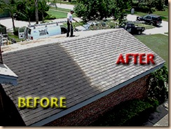 roof_cleaning_picture