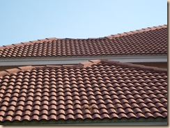 Tampa Cleaning Tile Roof 1