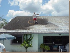 tampa roof cleaning picture