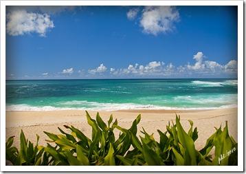 72 res DSC_0003 North Shore beach