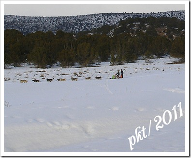 P1010018-dog-sled-10-by-8