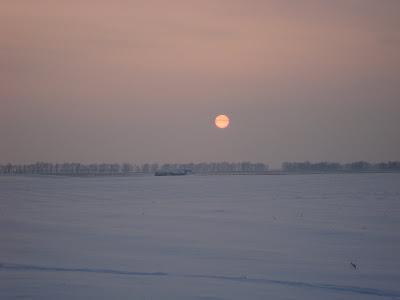 Красивый закат, вид с заснеженного поля