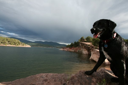 Milton poses while the storm rolls in.