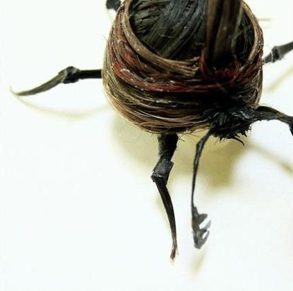 adrienne antonson makes insects