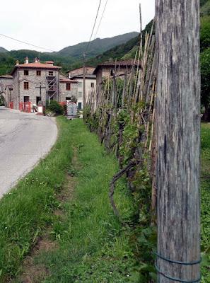 Naar de Ponta della Maddalena of de Duivelsbrug (Verlof Toscane mei 2009) (5/6)