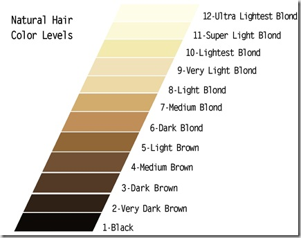 men & hair color professional