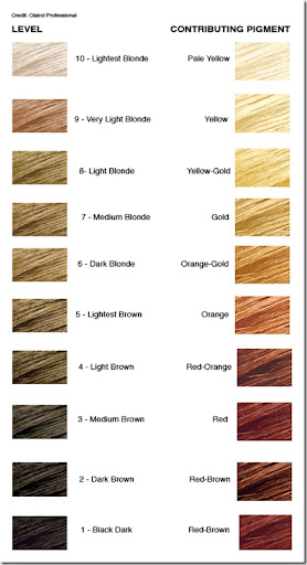 level system in hair color