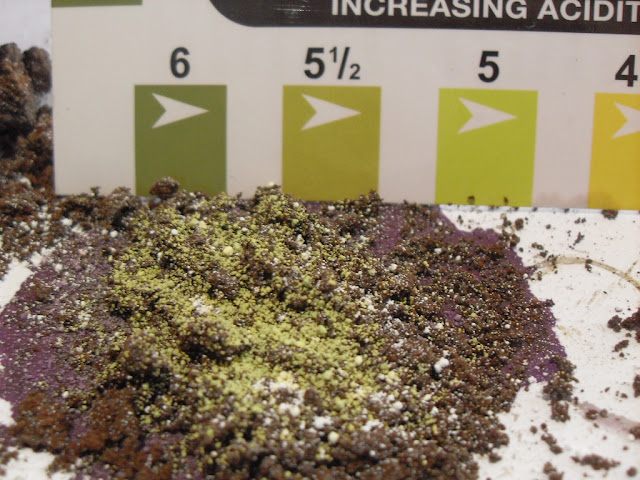 pH results for 9 month old coffee grounds 5.5 to 6