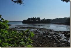 another low tide pic