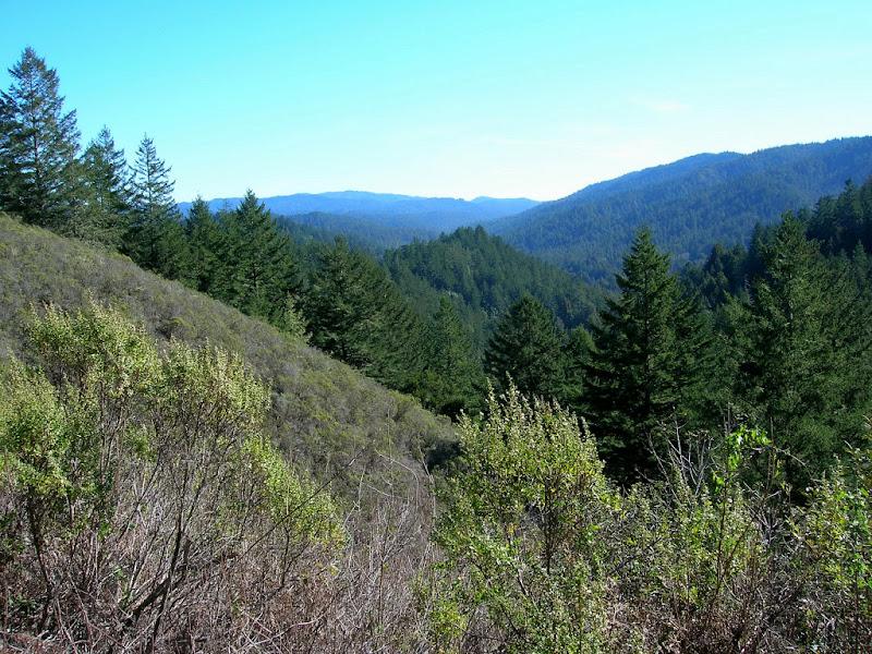 Mount Ellen, Pescadero Creek, and Butano Ridge