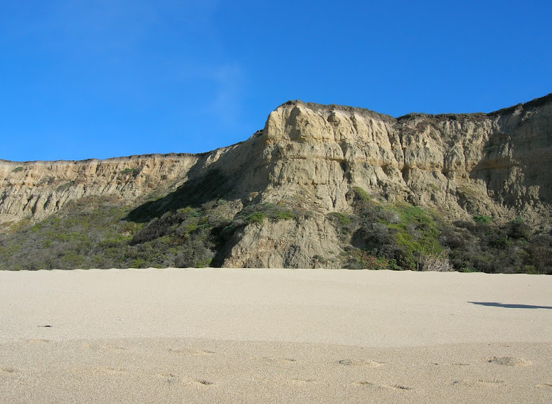 Looking up at the bluff