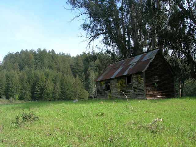 Always photogenic rustic shed on the Tarwater Trail