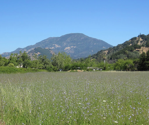 Mount Saint Helena from Calistoga