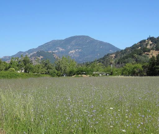 Mount Saint Helena from Calistoga