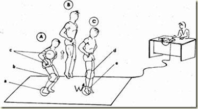 Squat Jump Bosco