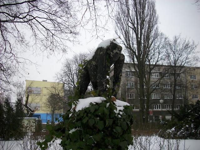 Małpa śnieżna