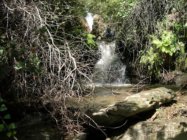 Sucesión de rápeles y cerrada vegetación