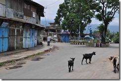 Haflong Bandh