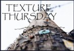 texture thursday