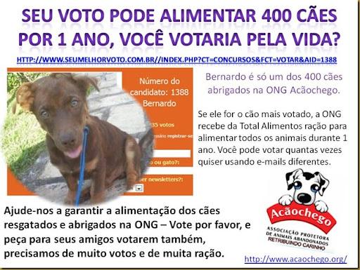 vote_acaochego