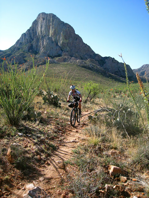 Elephant Head singletrack through the Ocotillos