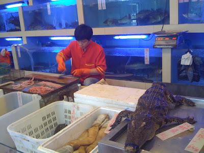 「鯉魚門」的點菜區:有種就吃了牠
