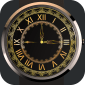 Elegant Watch Face icon