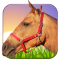 /APK_Horse-Ride-3D_PC,834433.html