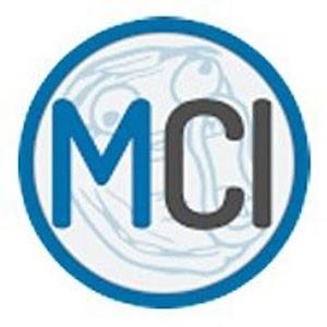 MCI Mobile