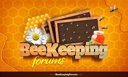 Beekeeping Forum screenshot 2