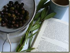 preserving olives 1_1_1