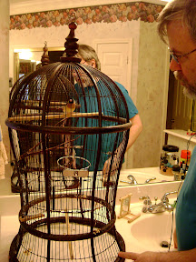 cage cleaning