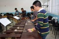 Nervios, mucha concentración, inquietud, curiosidad y ganas de aprender conocimientos musicales en torno a la percusión, caracterizaron las sesiones pedagógicas que se celebraron en el núcleo de Guanare