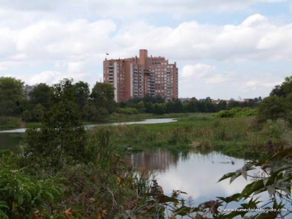 Humedal Córdoba 2 sector
