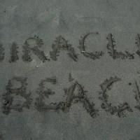 Miracle Beach-2019