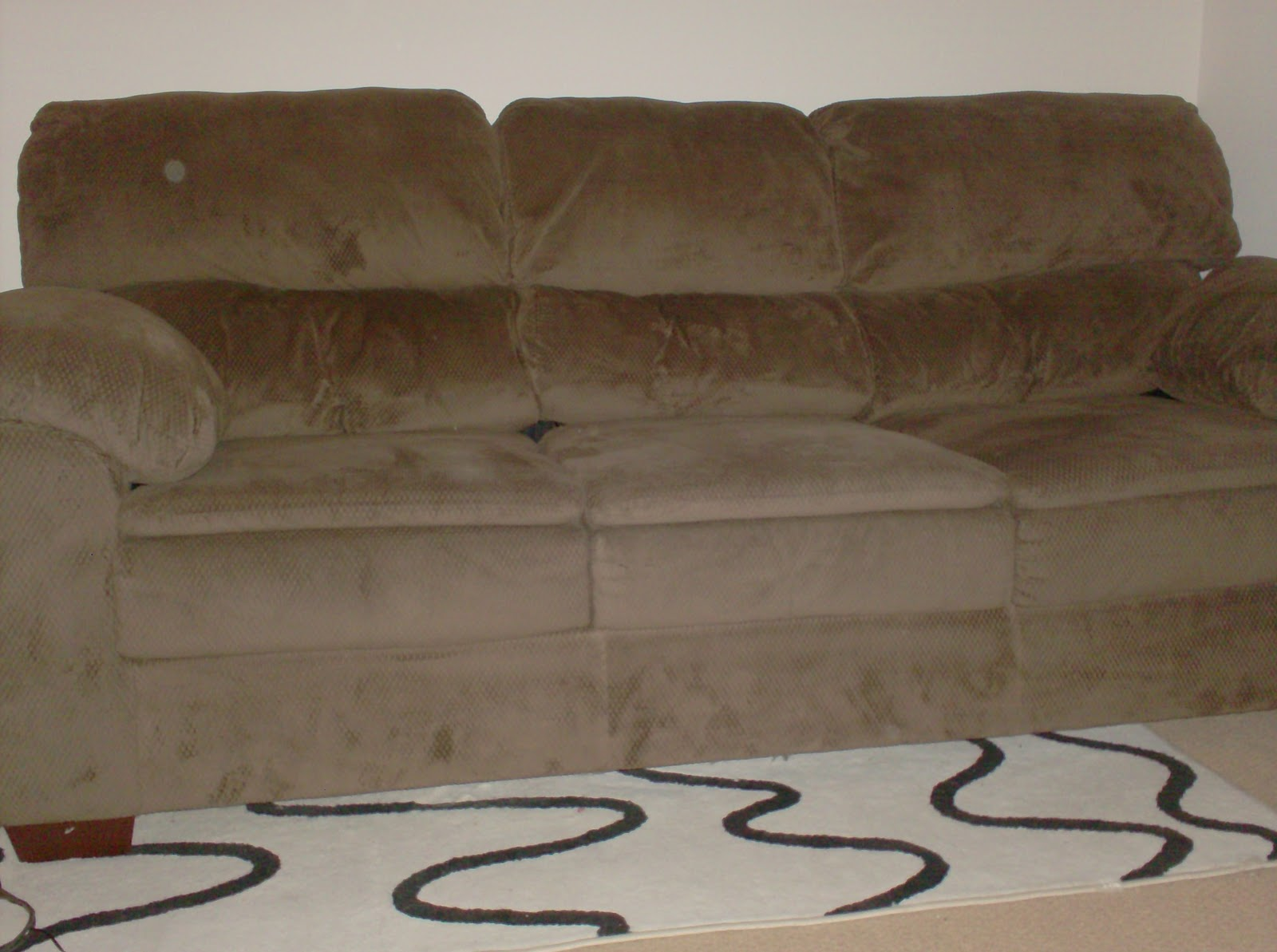 canvas chair covers brisbane leaf stand check sofas checked ebay thesofa