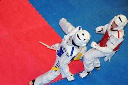 taekwondo tornooi op Schiervelde