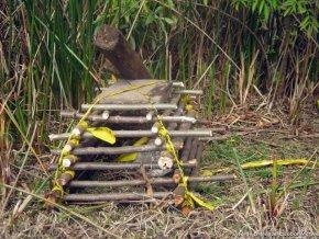 Trampa para roedores, Separador Auto Norte