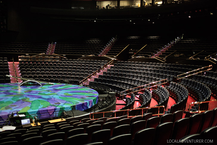 Behind the Scenes with Mystere Cirque Du Soleil Las Vegas.
