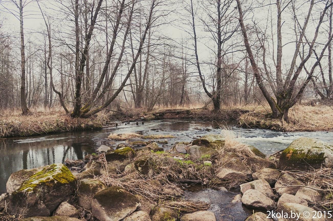 д. Найденовичи. руины мельницы