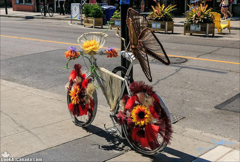 LookAtCanada.com / Канадские велосипеды настолько красивы...