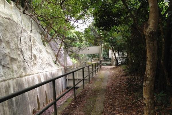 Hong Kong Trail Section 7