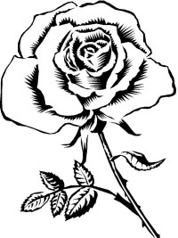 Pinto Dibujos: Rosa para el da de las madres para colorear