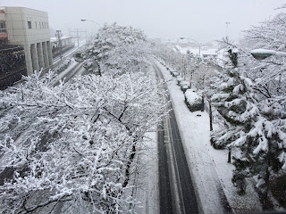 Tuyết rơi ở Nhật Bản